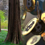 Conservation & Cryptocurrency